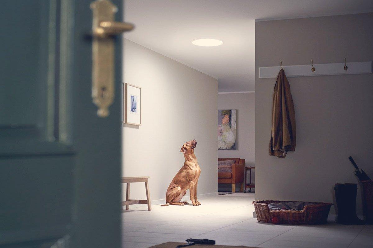 Reformar tu piso